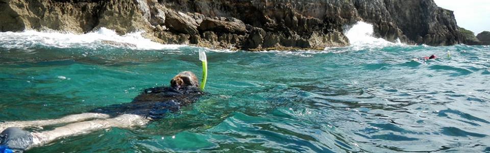 snorkelers-DSCN1256